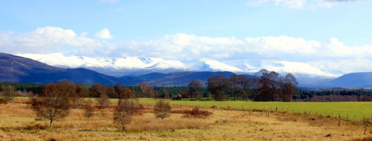 Cairngorms header